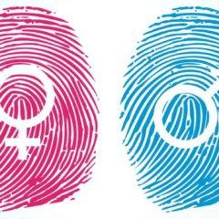 La igualdad. Una lucha conjunta