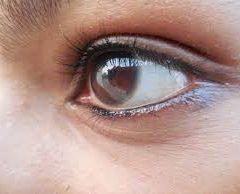 Los madrileños pasan casi la mitad de un año con sus ojos puestos en alguna pantalla