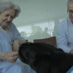 El Hospital Severo Ochoa firma un convenio de colaboración con la asociación Canina de Leganés