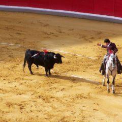 Suspendidos los festejos taurinos de Alcalá de Henares