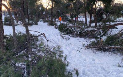 Leganés solicitará la declaración de zona catastrófica
