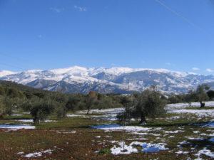 Nueva nevada en Madrid