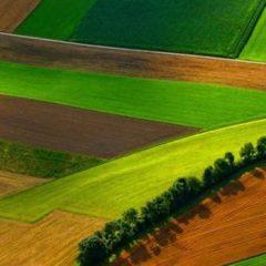 Madrid destina cerca de 400.000 € para formar profesionales en la investigación del entorno rural